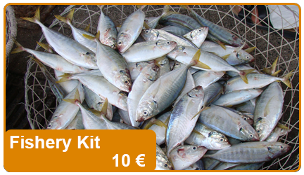 A basic fishery kit, it includes hooks, lines and small parts for fishing