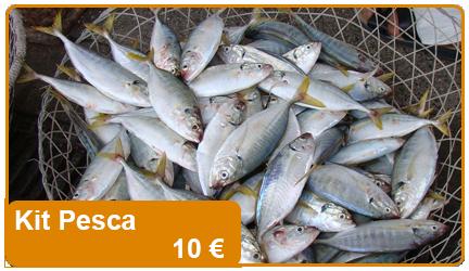 Un kit base per la pesca, include ami, lenze e minuterie per la pesca.